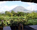 Gardenia Country Inn, Manado, Indonesia - Copyright Karen Jacobs