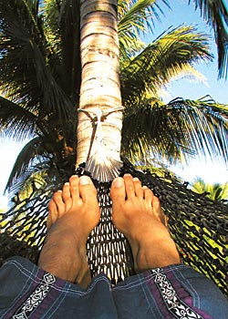 Hammock Time - copyright Ken Knezick - Island Dreams