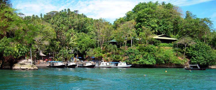 The excellent Lembeh Resort, with diving by Critters@Lembeh