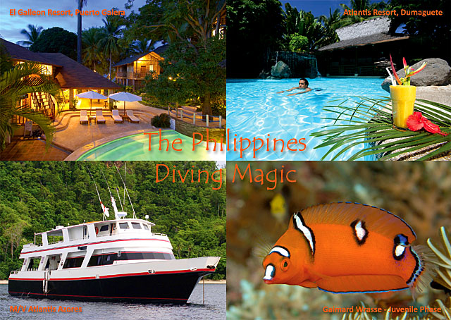 The Philippines, Diving Magic